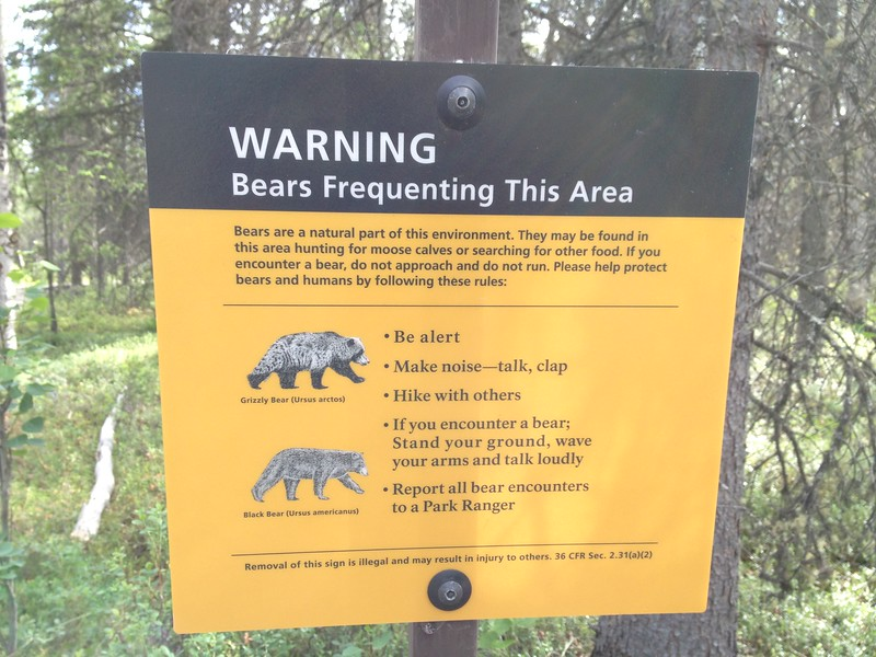 cheaper alaska hawaii bear warning sign