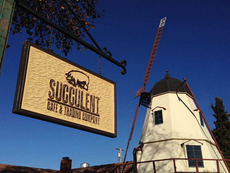 visiting solvang - succulent cafe sign with windmill